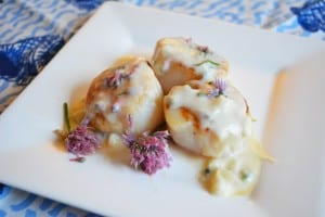 Chive Flower Parmesan Cheese Sauce