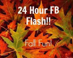 24 Hour Facebook Flash