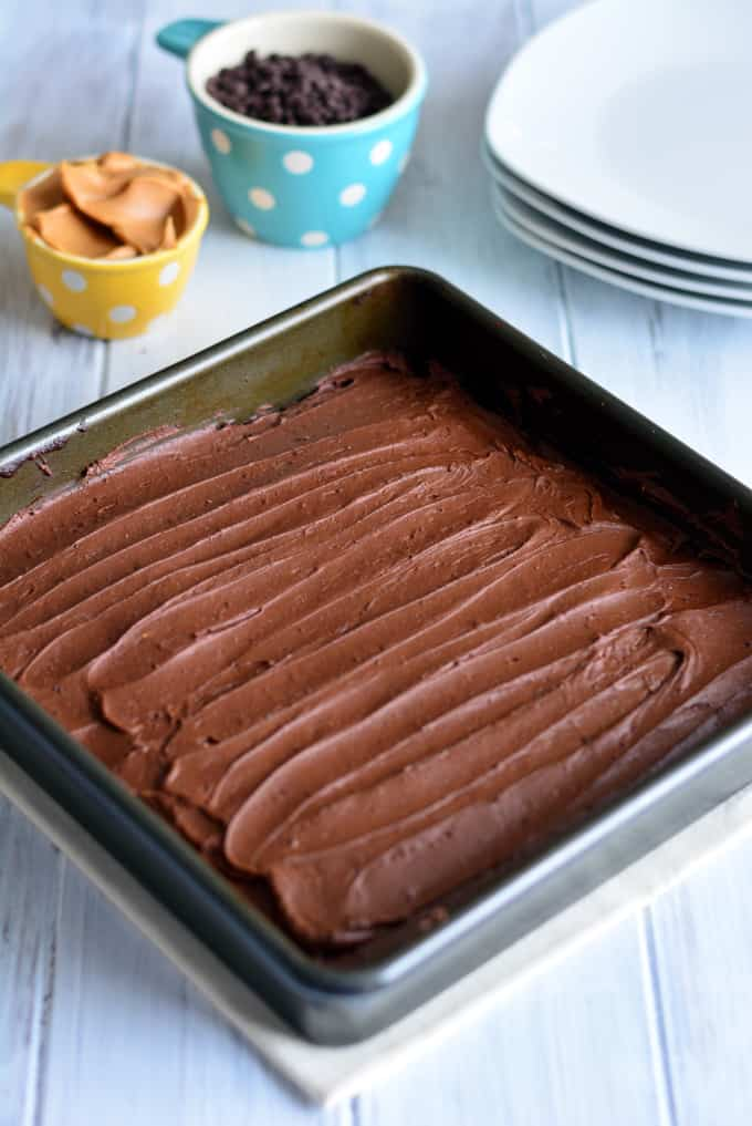 Peanut Butter Brownies in a square pan with chocolate icing.