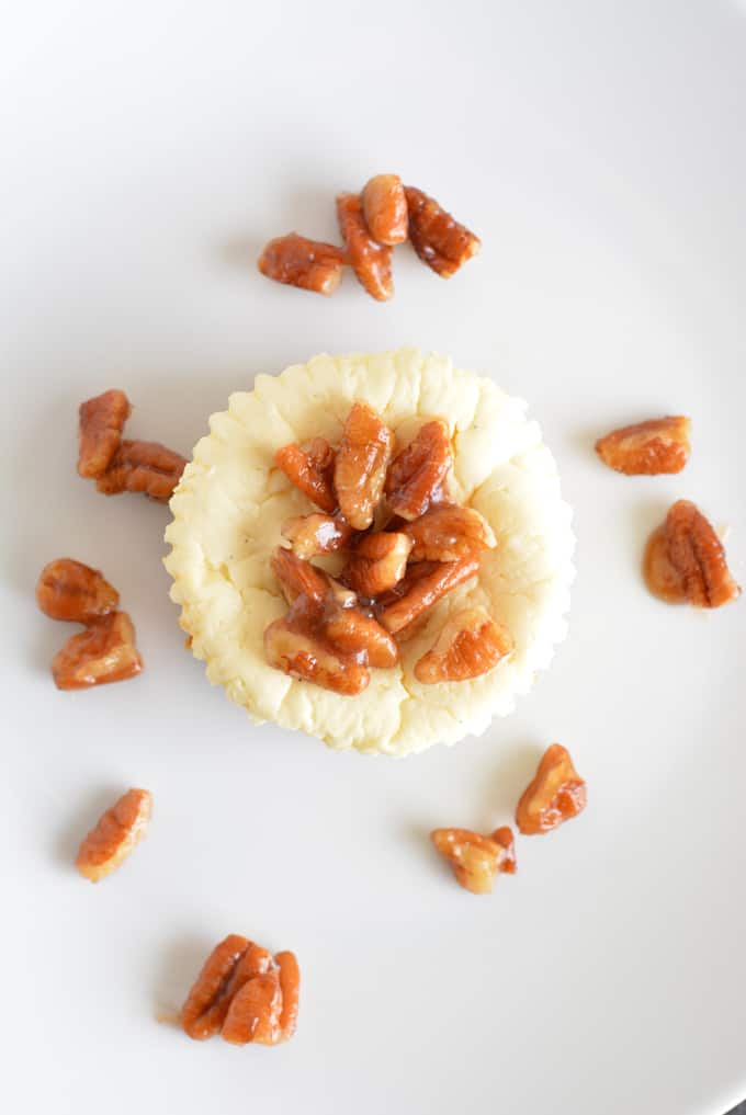 Pecan Topped Mini Cheesecakes with Gingersnap Crust on a white plate with pecan pieces on the plate.