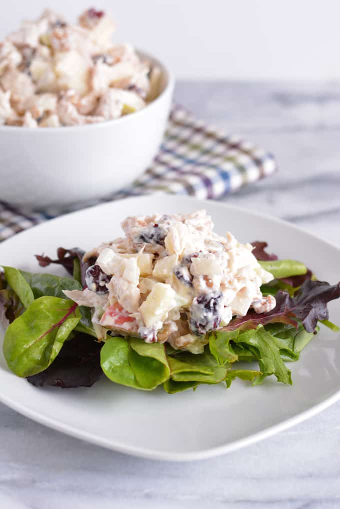 Homemade turkey salad on a bed of salad greens on a white plate.